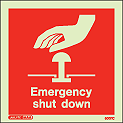 6001C - Jalite Emergency Shut Down